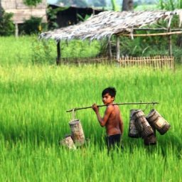 Cambodja-Siem-Reap-Excursie-Country-Life-Photography2