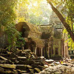 Cambodja-Siem-Reap-Excursie-Temples-of-the-Forest-4