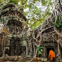 Cambodja-Siem-Reap-Excursie-Temples-of-the-Forest-5