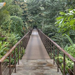 Costa-Rica-Arenal-Hotel-Nayara-Springs-loopbrug