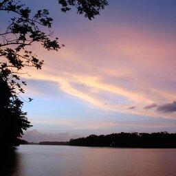 Costa Rica - Limón - Tortuguero - Manatus lodge (11)
