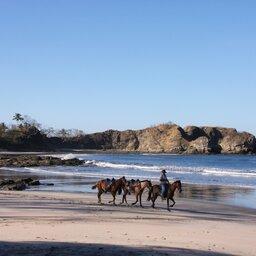 Costa Rica - paardrijden (3)