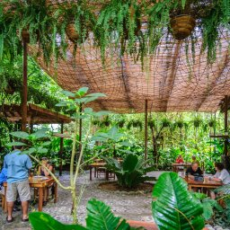 Costa-Rica-Pacuare-Hotel-Pacuare-Lodge-restaurant