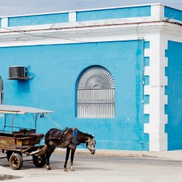 Cuba - paard en car
