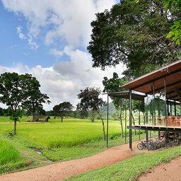 Dambulla-Kalundewa-omgeving