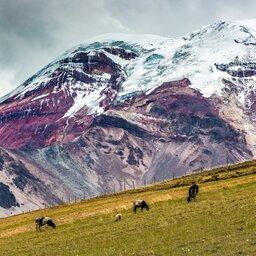 Ecuador - Chimborazo vulcano