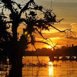 Ecuador - Laguna Grande, Cuyabeno Wildlife Reserve - amazon