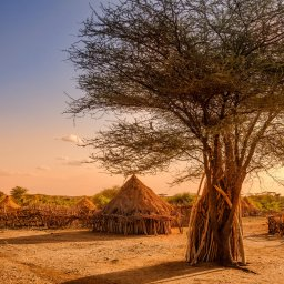 Ethiopië-Omo vallei-Hamer dorp