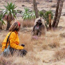 Ethiopië-Simien gebergte-Dame met Gelada bavianen