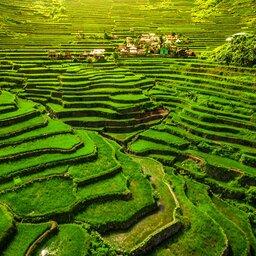 Filipijnen - Batad - noord Luzon