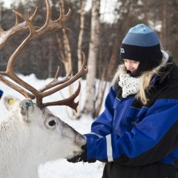 Finland-Lapland-Ivalo-wilderness-hotel-Inari-rendierboerderij