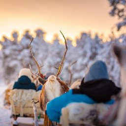 Finland-Lapland-Ivalo-wilderness-hotel-Inari-rendiersafari