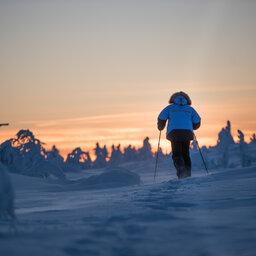 Finland-Lapland-Saariselka-Javri-Lodge-cross-country-ski-langlaufen-sneeuwschoenwandelen