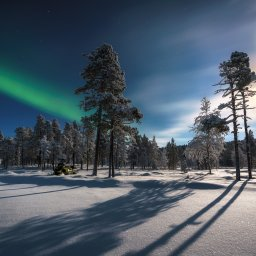 Finland-Lapland-Saariselka-Javri-Lodge-noorderlicht (6)