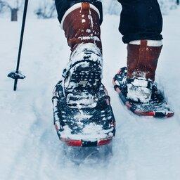 Finland-Zweden-Lapland-sneeuwschoen-Levi-wandelen (2)