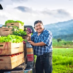 Guatemala - boer