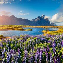 Ijsland - Stokksnes headland