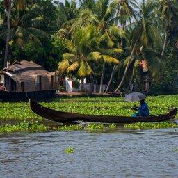 India-Kochi-Backwaters 2