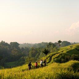 Indonesië-Bali-Fietstocht door de rijstvelden