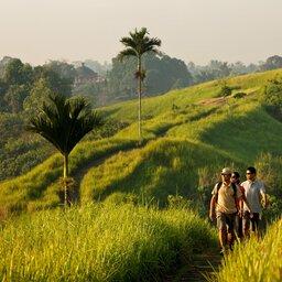 Indonesië-Bali-ochtendwandeling