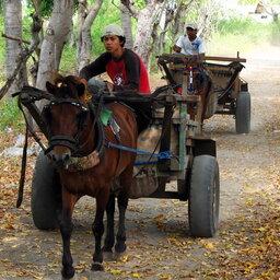 Indonesië-Gili-Eilanden-paardenkar
