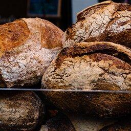 Italië-Basilicata-Excursie-Bezoek-aan-Matera-met-brood-workshop-in-Altamura