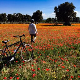 Italie-Puglia-Excursie-Bike-&-taste-the-countryside (2)