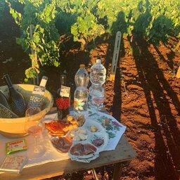 Italie-Puglia-Excursie-Wine-tasting-in-the-countryside (3)