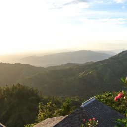 Jamaica-Blue Mountains (5)