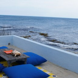Jamaica - Treasure Beach - Jakes Resort (4)