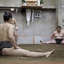 Japan-Hoogtepunt3-Sumo Worstelen