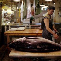 Japan-Tokyo-Hoogtepunt-vismarkt
