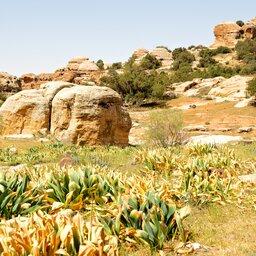 Jordanië-Dana reservaat-resized (1)
