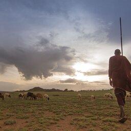 Kenia-Hoogtepunt2-Masai Krijger