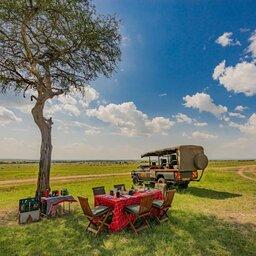 Kenia-Masai Mara-Emboo River Camp-pikcnick in de bush 2-min