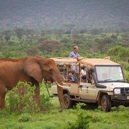 Kenia-Samburu Game Reserve-Elephant Bedroom Camp-game drive
