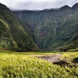 La Reunion-algemeen-groen landschap