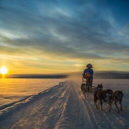 Lapland - Husky - Safari - Sneeuw (11)