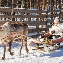 Lapland - Rendier - slee - sneeuw  (9)