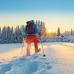 Lapland - Sneeuwschoenen - Wandelen (8)