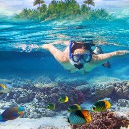 Malediven-snorkelen