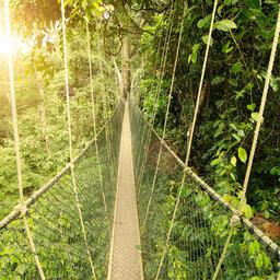 Maleisie-Taman Negara-hoogtepunt (3)