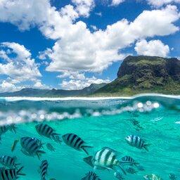 Mauritius-resized (1)