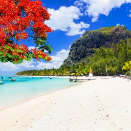 Mauritius-resized (42)