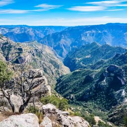 Mexico - Copper Canyon - Sierra Madre Occidental - Chihuahua