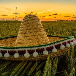Mexico - Sombrero