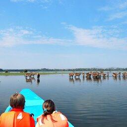 mini_Kenia-Lake Naivasha-boottocht