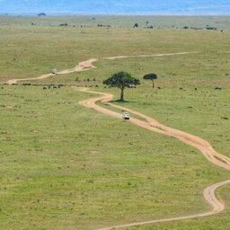 mini_Kenia-Masai Mara-weg vanuit de lucht