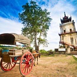 Myanmar-Mingun-hoogtepunt-ossenkar