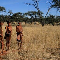 Namibië-Kalahari-hoogtepunt (2)